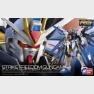 Strike Freedom Gundam - Z.A.F.T. Mobile Suit ZGMF-X20A - RG Excitement Embodied (Real Grade)