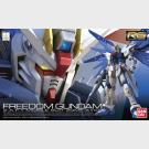 Freedom Gundam - Z.A.F.T. Mobile Suit ZGMF-X10A - RG Excitement Embodied (Real Grade)